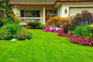 Lawn Maintenance Ocala, FL
