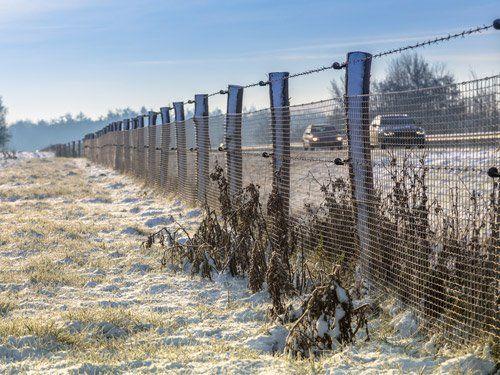 delle recinzioni all'aperto