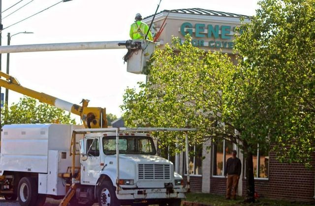 Lawn Care Pensacola Fl Tree Service Amp Rock Gardens