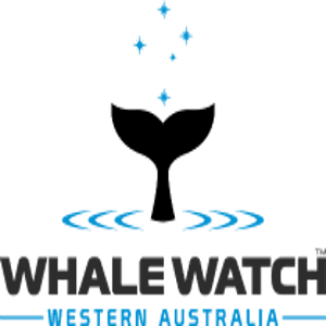 WHALE WATCH LOGO