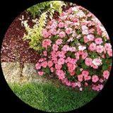 giardino semicircolare
