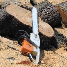 tree-surgeon-cheltenham-gloucestershire-paul-lane-chainsaw