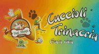 Cuccioli Trinacria Negozio Di Animali E Pesca - Logo