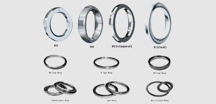 variety of ring type joints
