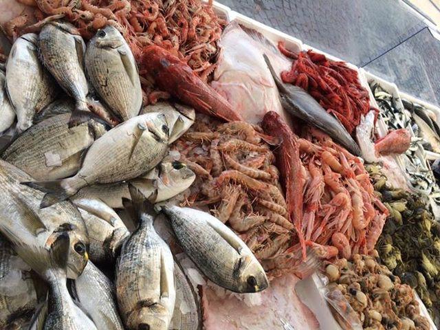 pesce fresco e altri animali del mare