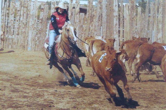 Mandriano a cavallo