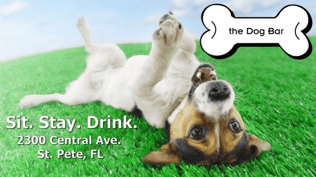 THE DOG BAR | St  Petersburg FL