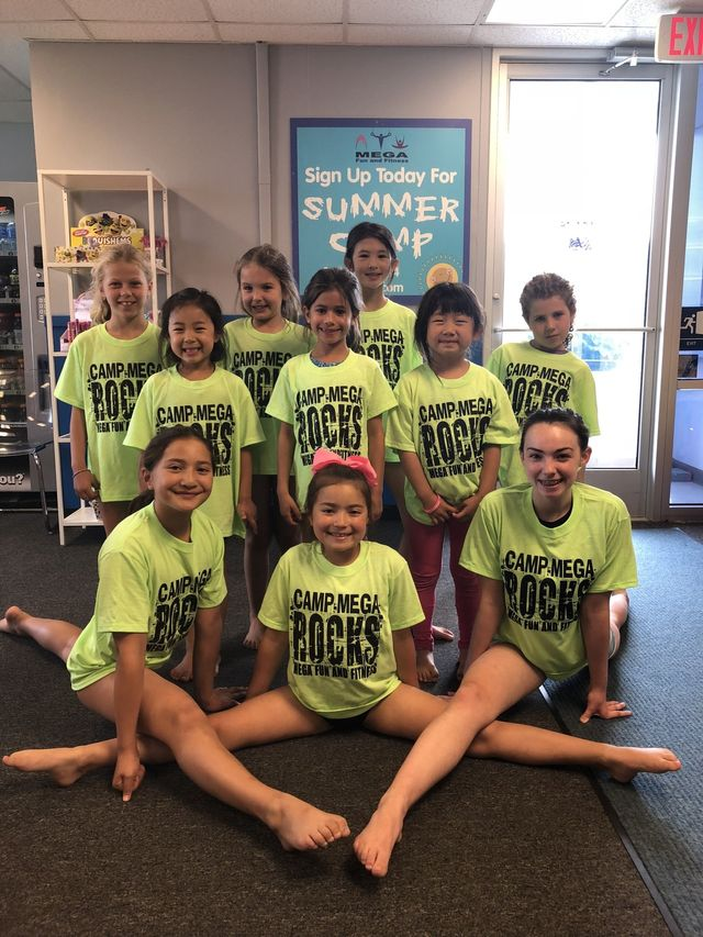 Gymnastics Summer Camps 2020.Summer Camp 2019 Novi Mi Mega Fun And Fitness