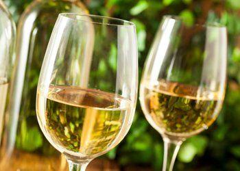 vini, lista dei vini, vini locali
