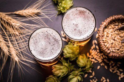birra con malto e luppolo