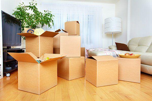 serie di scatoloni con in un salotto con divano bianco, una lampada, una pianta e sulla sinistra una tv