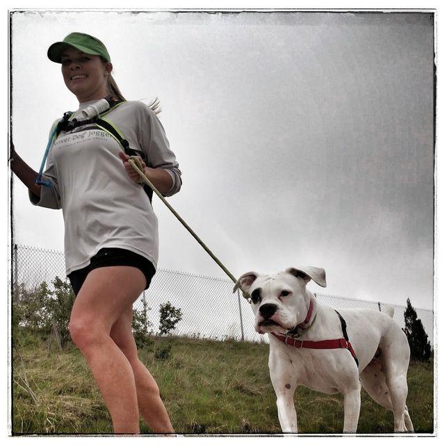 Dog Runners Denver - Samantha