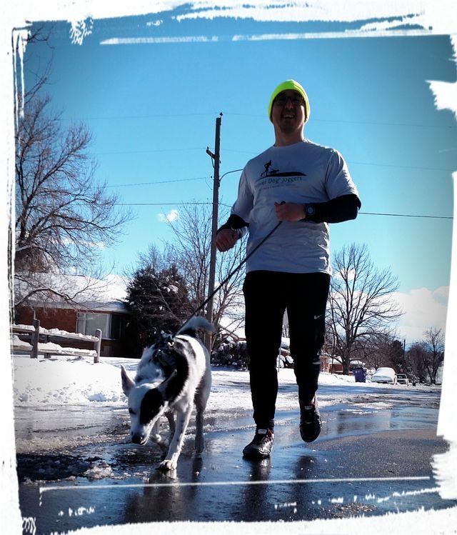 Denver Dog Joggers - Matt