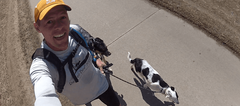 Denver Dog Joggers
