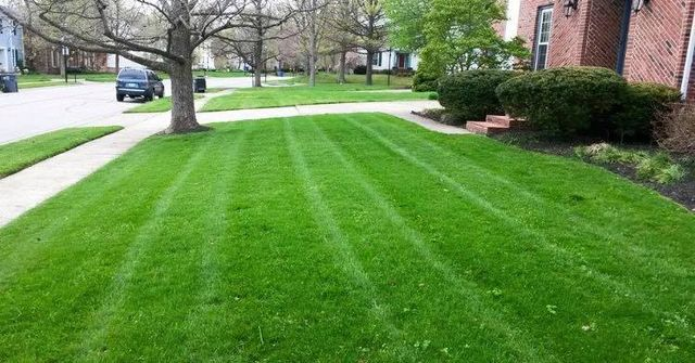 Lawn Care Services Amarillo, TX