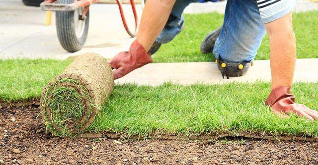 Synthetic Grass Amarillo, TX