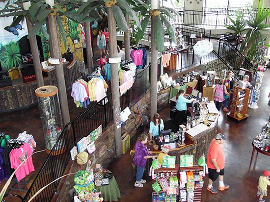 The Butterfly Palace & Rainforest Adventure - Branson, MO 65616 - Gift Shop