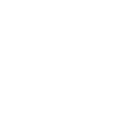 vector icons of healthy lungs
