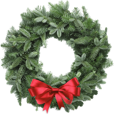 Holiday S Nursery Amp Landscaping Jacksonville Fl