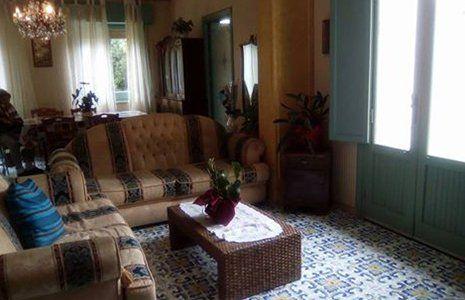 un salotto con due divani beige a righe nere e al centro un tavolino con sopra una pianta grassa