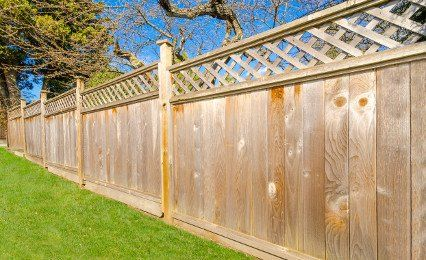 panel fencing with trellis top
