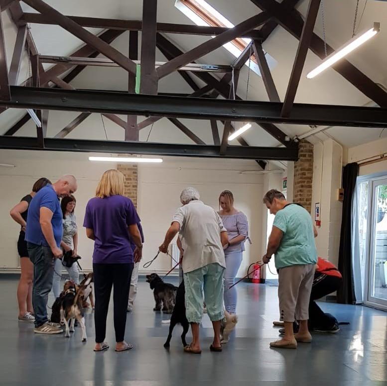 Dog training classes | Ron Mills Dog Training