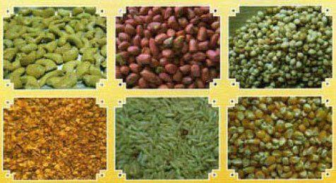 Aflatoxins affecting crops