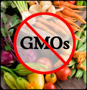 GMO_say no to GMO