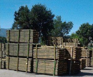 Travi e Pali di legno