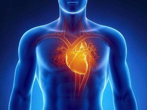 ecocardiografia palermo