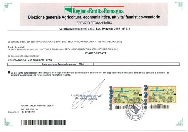certificazione Bg srl