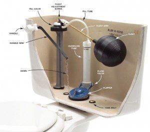 Illustration of the mechanics of a toilet
