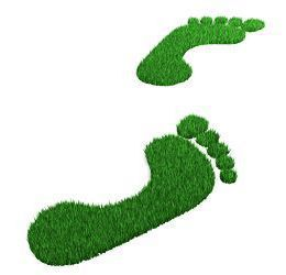 Fun foot prints made from turf grass.