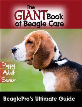 Beagle book eBook option