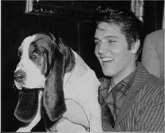 Elvis and his Basset Hound