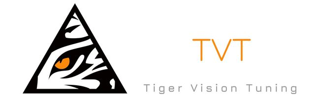 Tiger Vision Tuning - After Treatment Service