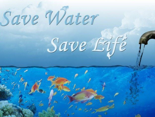importance of water in our life