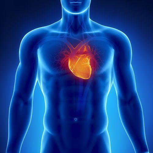 un'immagine di un uomo blu e vista del cuore