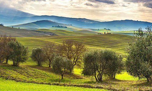 Campi seminati tra le colline