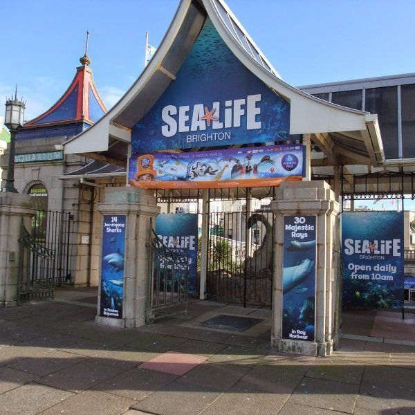 Street Scaffolding Services - Brighton Sealife Centre