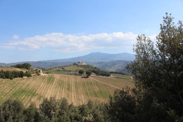campagna toscana e chiesa romanica su sfondo