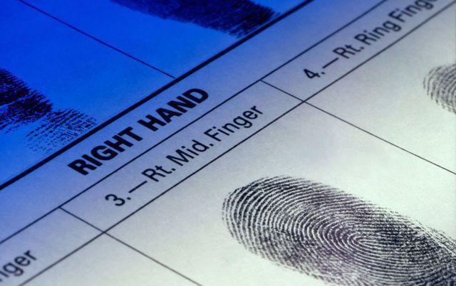 Closeup Of A Fingerprint