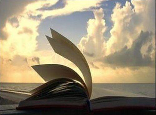 pagine di un libro sfogliate dal vento
