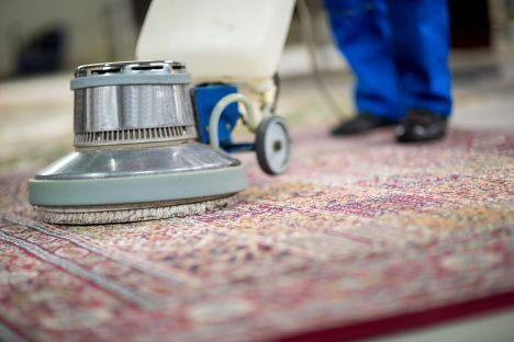 Oriental Rug Cleaning East Grand Rapids Mi Cascade Carpet Cleaning