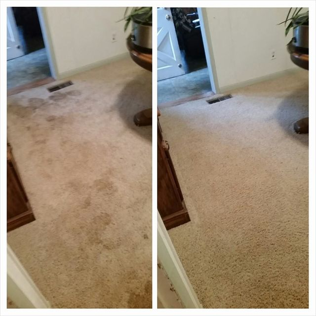 Carpet Upholstery Cleaning Fort Wayne In Encore