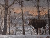 Byron Birdsall wildlife print