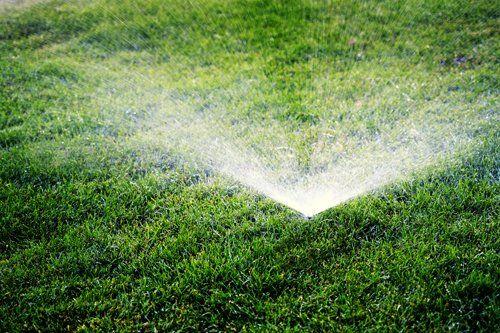 impianto di irrigazione in funzione