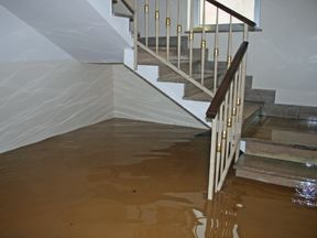 Water Damage Restoration in Houston, TX