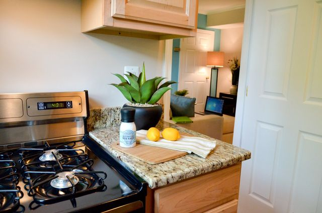 Manor House Apartments Photo Gallery Extraordinary 3 Bedroom Apartments In Alexandria Va