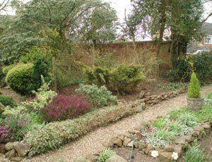 garden site clearance